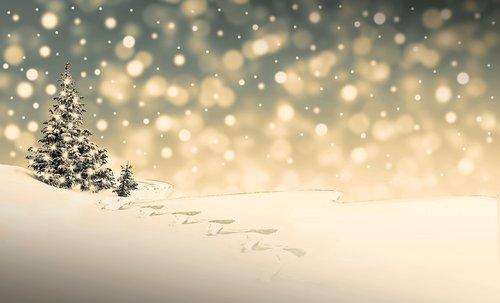 christmas  snow  winter