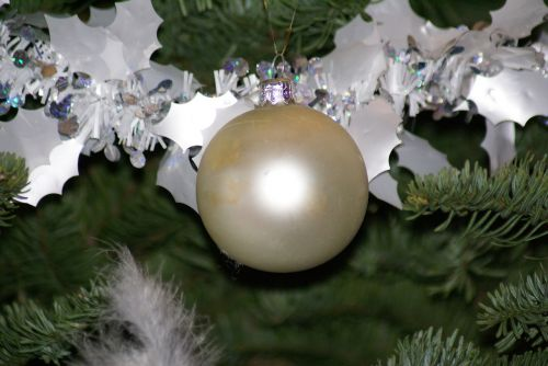 christmas fir decoration