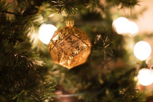 christmas background  christmas  christmas tree