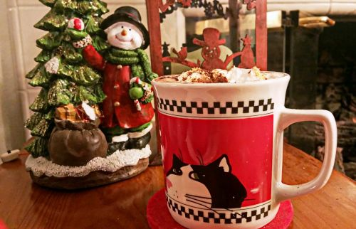 Christmas Hot Chocolate Mugs