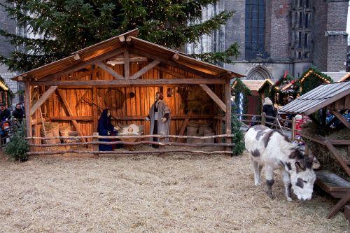 christmas market stall donkey
