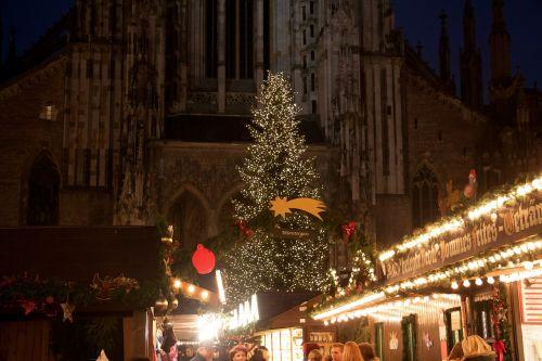 christmas market fir christmas tree