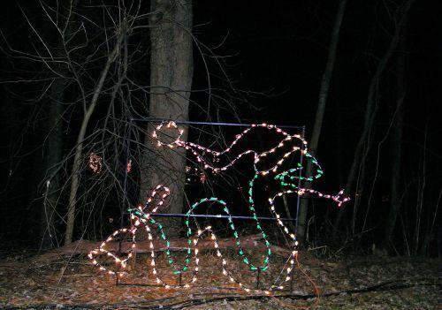architektūra, atostogos, šviesa, efektai, objektai, sezonai, Kalėdos, žibintai, Kalėdų gyvatė