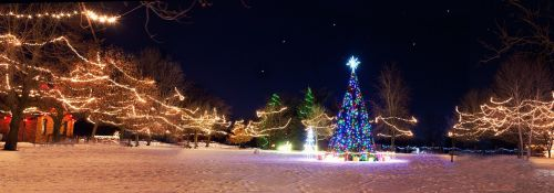christmas town,xmas tree,winter,holiday,season,night,village,december