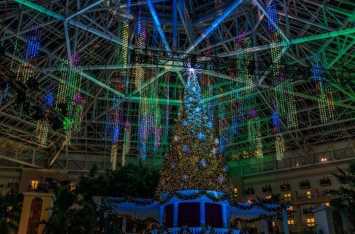 christmas tree light show festive