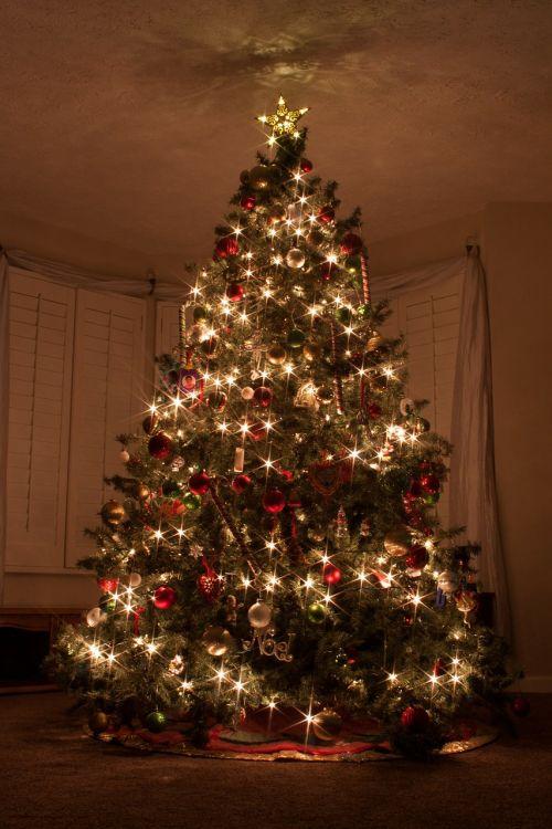 christmas tree christmas lights star