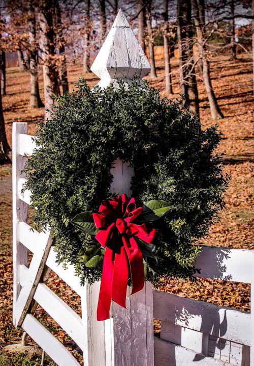 christmas wreath gate boxwood wreath