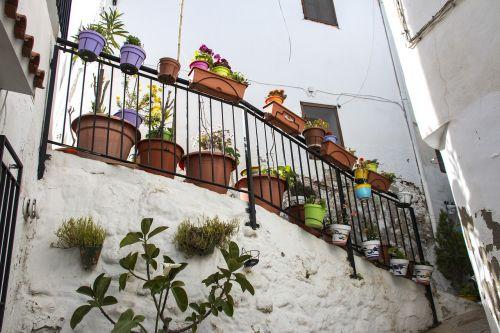 chulilla balcony plants