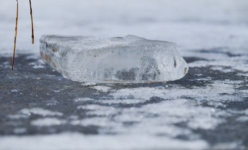 chunks of ice frozen pond water