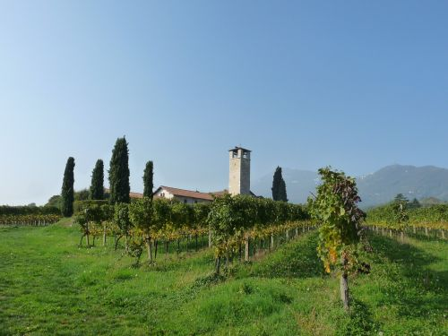 church vineyards bergamo
