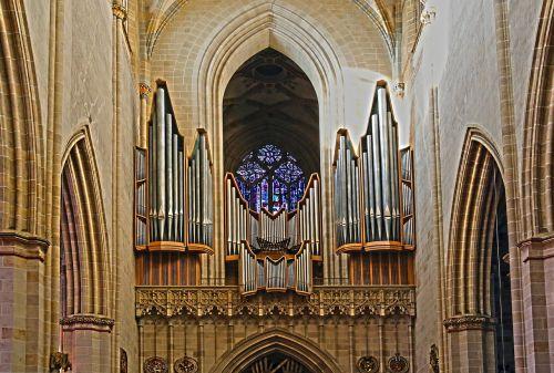 church organ organ ulm cathedral