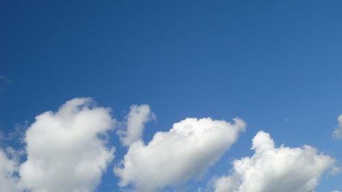 Chichen Sky