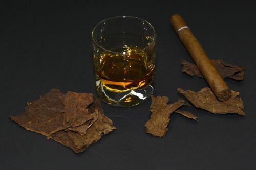 cigar tobacco leaves whiskey glass