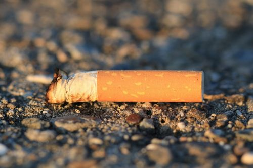 cigarette stub cheroot
