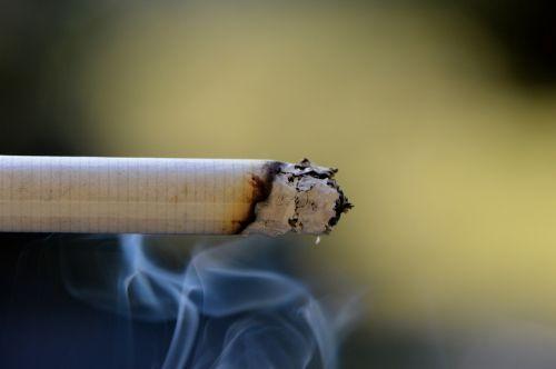 cigarette smoke embers