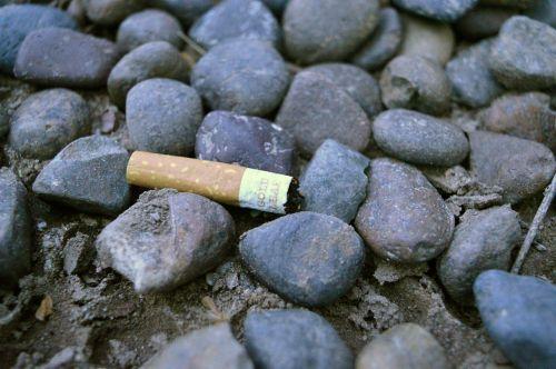 cigarette cigarette butt contamination