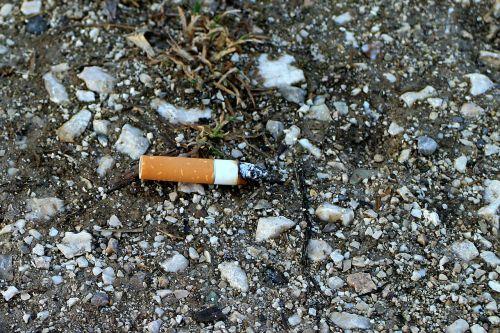 cigarečių užpakalis,kant,cigarečių,netikras,cigarečių galas,peleninė,šalinimas,išmesti,pašalinti,tarša