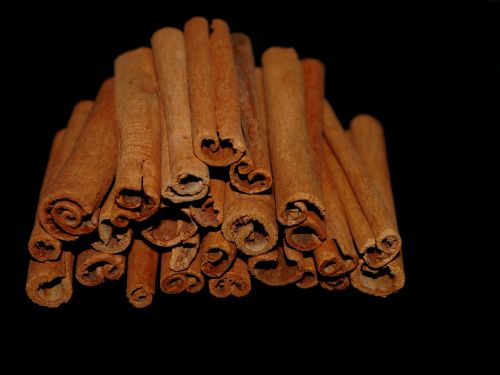 cinnamon cinnamon stick spice