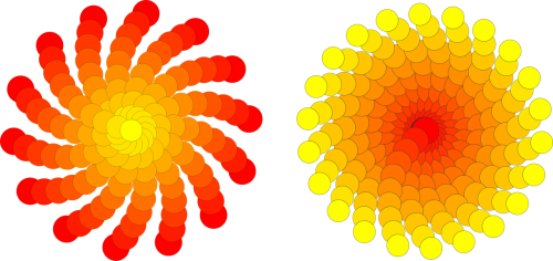 circles sol flowers