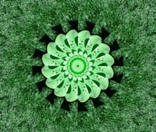 Circular Abstract Green Background