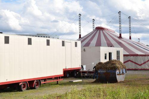 circus circus tent small