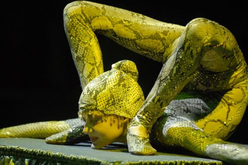 circus european youth circus 2008 snake man
