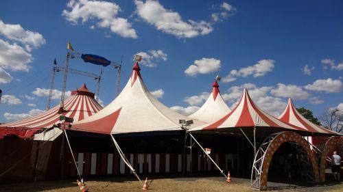 circus clown são carlos