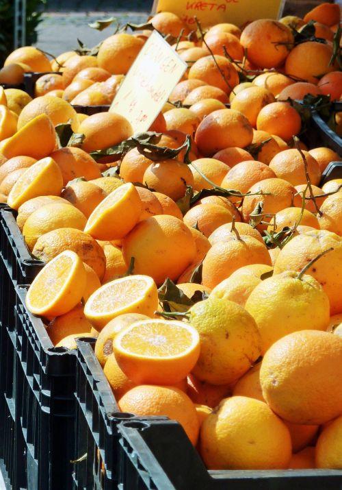 citrus citrus fruits lemon