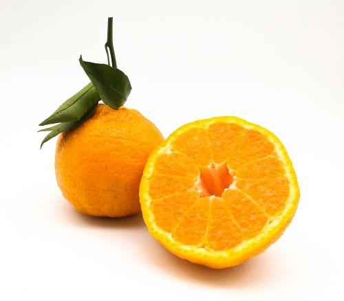 citrus miscellaneous citrus don't fire