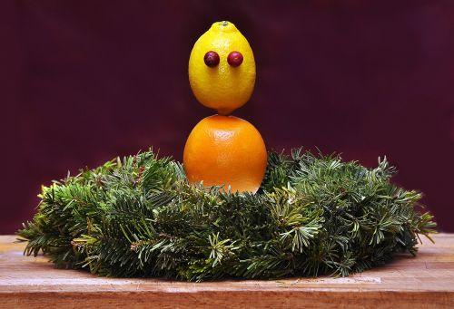 citrus holidays vitamin c