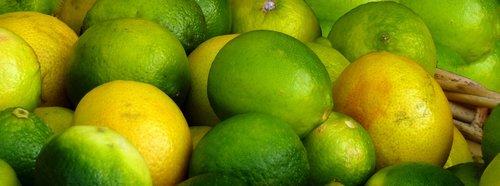 citrus fruits  vitamins  fruit