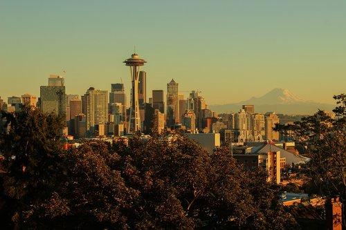 city  skyline  cityscape
