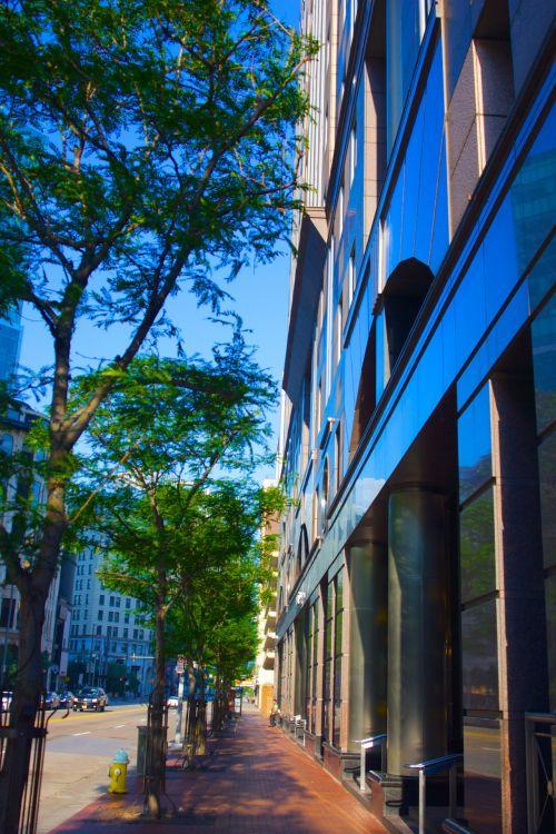City Sidewalk In Morning