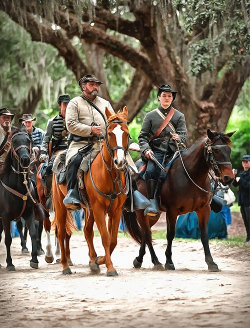 civil war reenactment horses