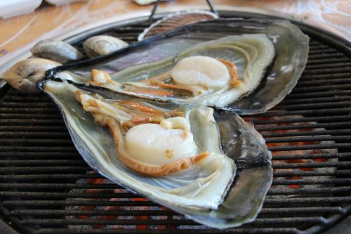 clam grilled shellfish seafood