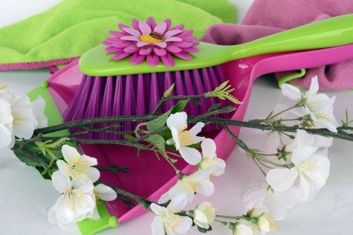 clean spring putz blade