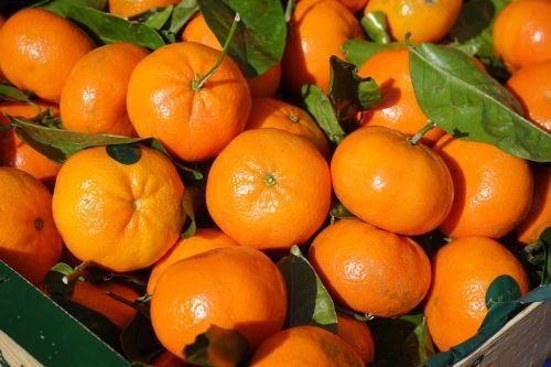 clementines fruit vitamins