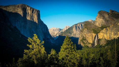 cliffs forrest green