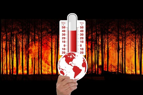climate change  thermometer  forest fire