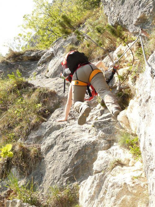climber climbing climbing platform system