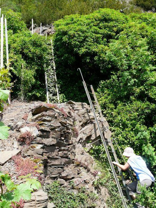 climbing hike climb