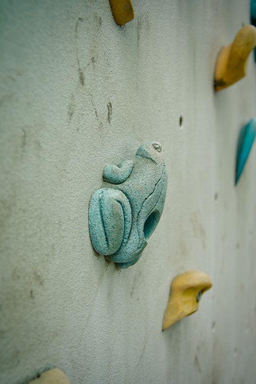 climbing wall frog grab bar