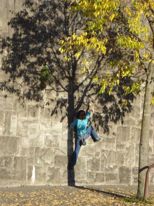 climbs wall shadow