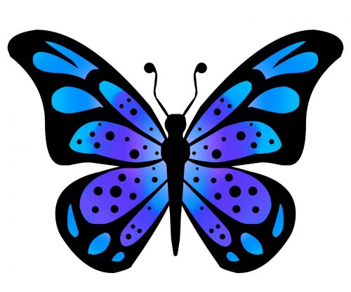 Clipart Butterfly 3