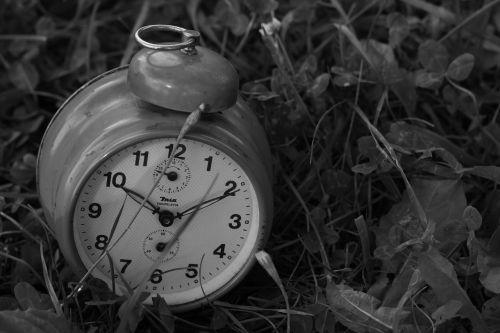 clock grass old