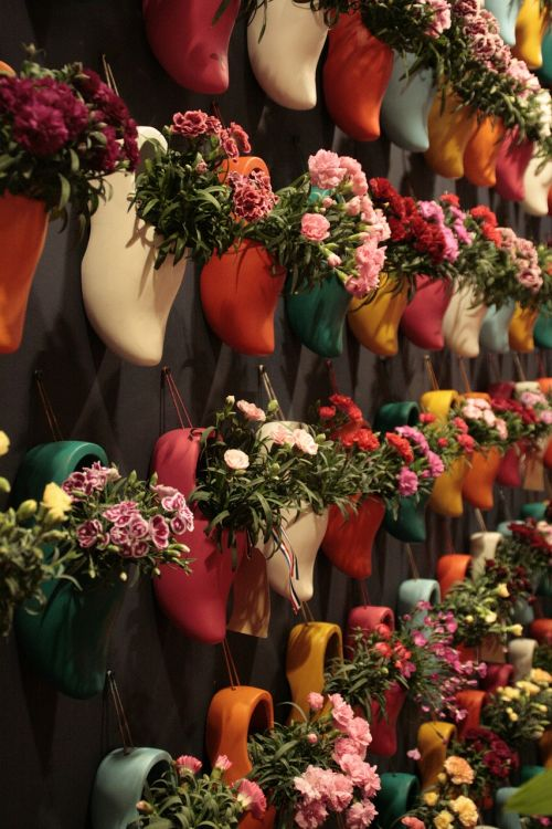 clogs flowers horticulture