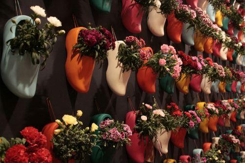 clogs flowers netherlands