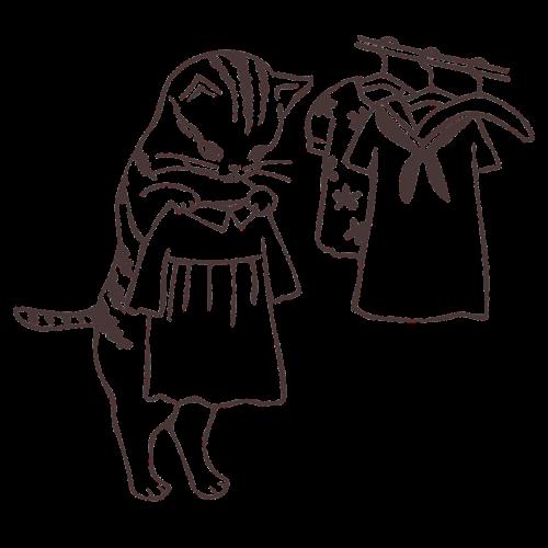 clothes wardrobe choose