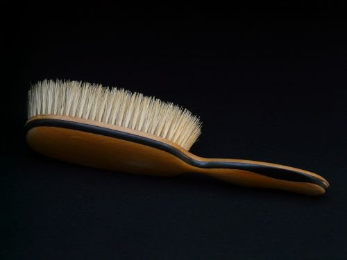 clothes brush brush dresses