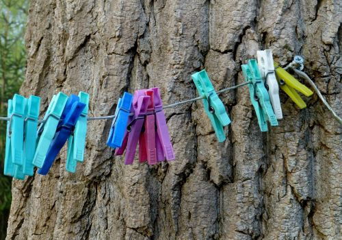 clothes line washing brackets tree